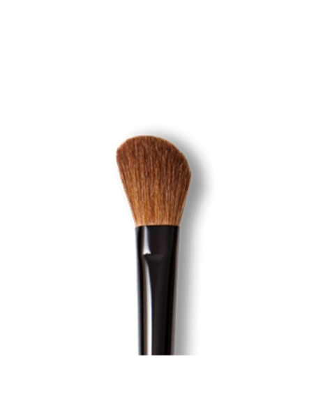 Mineralogie Black Contour Brush